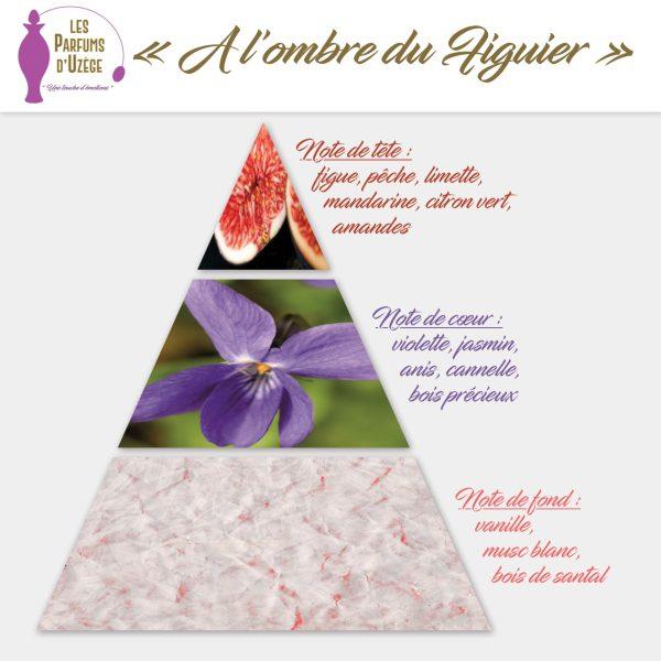 A l'ombre du Figuier - pyramide olfactive