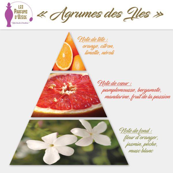Agrumes des Îles - Pyramide olfactive