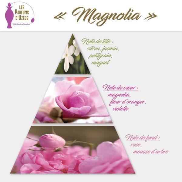 Magnolia - Pyramide olfactive