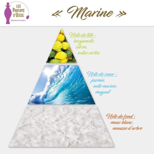 Marine - Pyramide olfactive