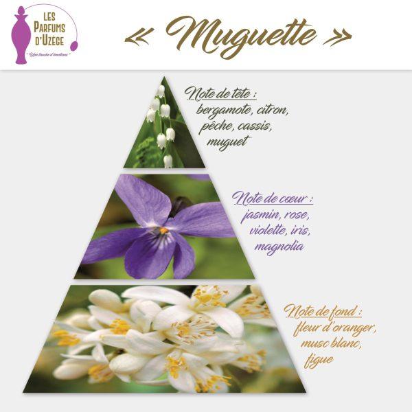 Muguette - Pyramide olfactive
