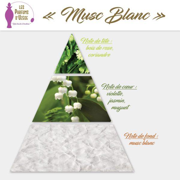 Musc Blanc - Pyramide olfactive
