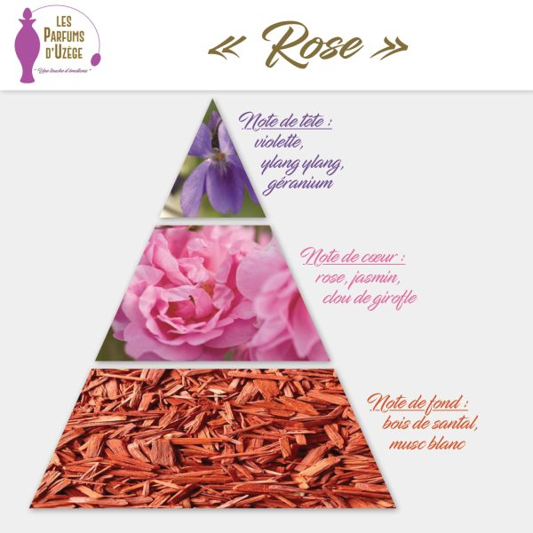 Rose - Pyramide olfactive