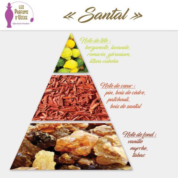 Santal - Pyramide olfactive