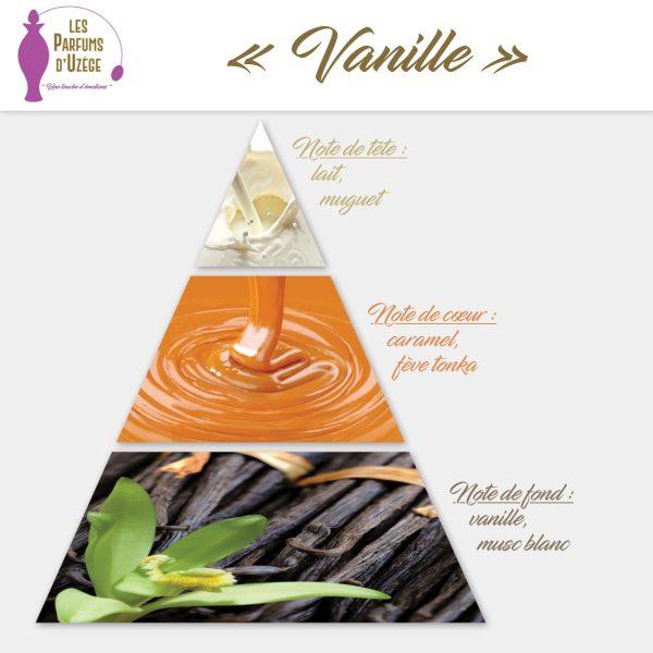 Vanille - Pyramide olfactive