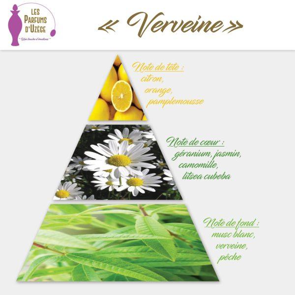 Verveine citron - Pyramide olfactive