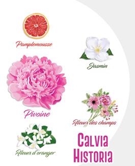 Nouveauté Printemps 2017 : Calvia Historia