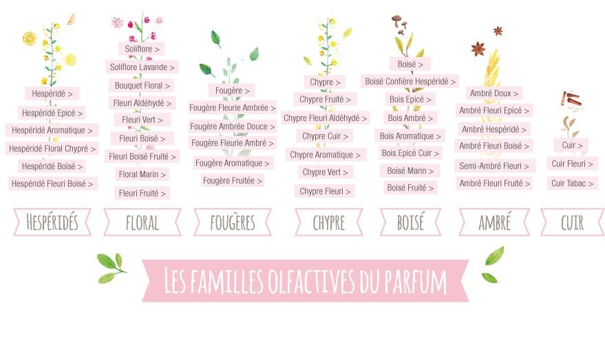 Les Familles Olfactives