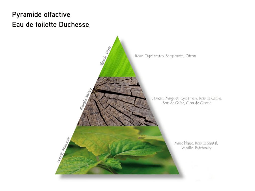 Pyramide olfactive de l'eau de toilette Duchesse, des Parfums d'Uzège